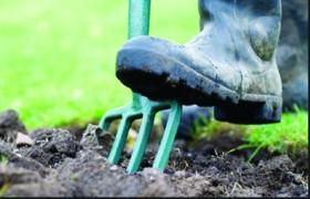 gardening_feet at work
